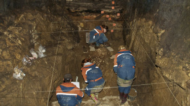Researchers excavate a cave for Denisovan fossils in the Altai Krai cave.