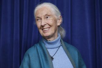 Fangirl moment: Dame Jane Goodall has endorsed the work of Emma Lewisham.