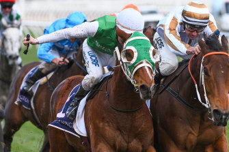 Michael Poy riding The Inevitable defeats Dwayne Dunn riding Assertive Approach (right) in Race 6, VRC Member Brenda Nugent Handicap  during the VRC/MCC Members Race Day at Flemington.