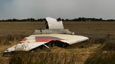 A portion of the MH17 wing lies in the field outside the village of Grabovka in 2014.