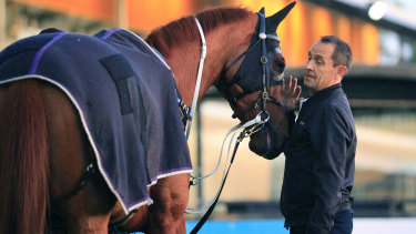 Chris Waller with Haut Brion Her on Tuesday morning.