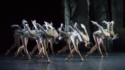 Swans are bitches: ballet ruffles feathers with dark take on classic