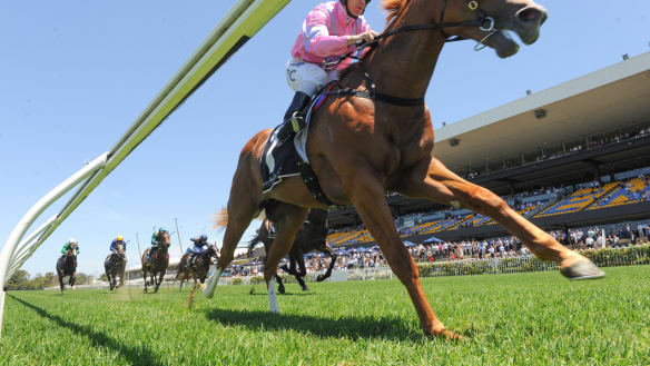 Waterhouse-Bott ready to Unite And Conquer two-year-old feature