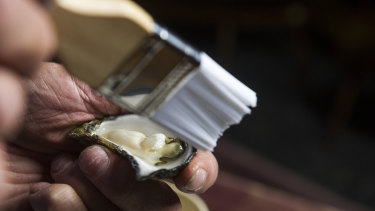 Step three: Brush any small bits of shell away using a pastry brush. Avoid washing the oyster with tap water.