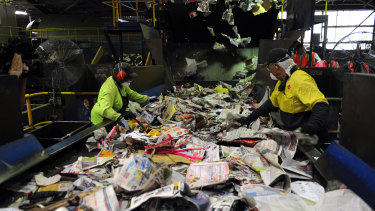 Workers at the Visy recycling plant in Brisbane.