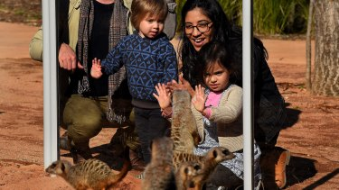 Carolina Holland, with her children Enzo (left) and Lourdes, look at meerkats at Taronga Zoo.