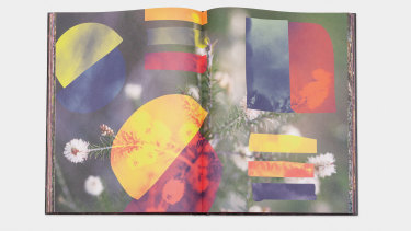 A spread from Rogue: Art of a Garden.