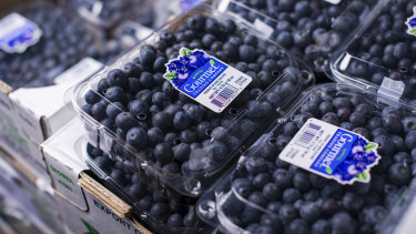 Blueberries, more expensive in part due to a shortage of pickers, added to inflation in the July quarter. But the RBA will not be worried about the costly fruit.