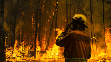 A rural fire service firefighter attempts to protect a property during the Currowan fire in NSW.