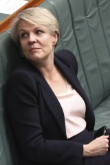 Leadership material: concerns about Tanya Plibersek's appeal in parts of western Sydney or with blue-collar workers are receding.