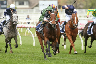 Time is running out for Shared Ambition to make it into the Melbourne Cup.
