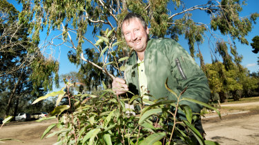 Mildura Native Nursery managing director Tony Langdon.