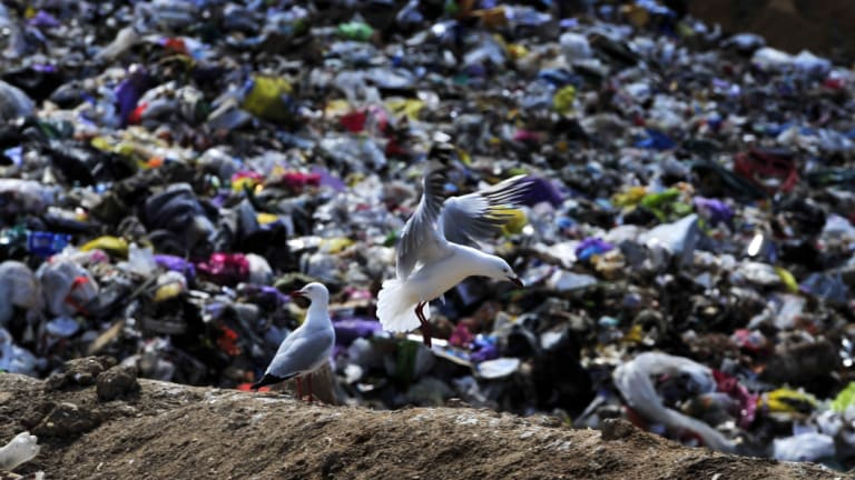 China's 'National Sword' policy has upended the global recycling business.