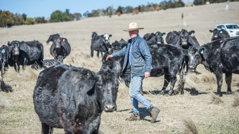 Braidwood farmer Martin Royds has managed the drought after introducing soil science techniques and making a lot of management changes to minimise the effects of drought, fires and climate change.