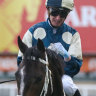 O'Brien says Moor is the man for Cup glory, McDonald set for Zaaki in Cox Plate
