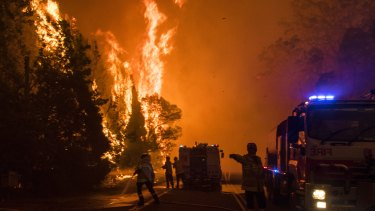 """A line from the letter: """"The message is clear: the situation is becoming ever less manageable as extreme-fire-risk weather becomes more common."""""""