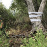 Massacre at Myall Creek inspires artist to evoke spirit of survival