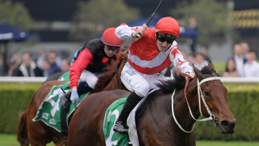 There are eight races on the cards in Taree.