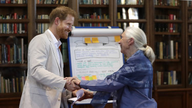 Prince Harry and Dr Jane Goodall at Windsor Castle this month.