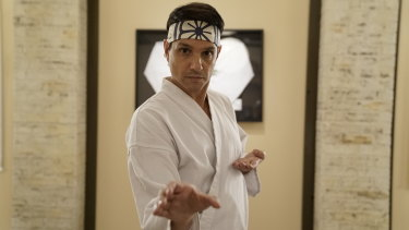 Ralph Macchio was hesitant to reprise the role of Danny LaRusso in Cobra Kai, the TV spin-off of Macchio's hugely successful film The Karate Kid.