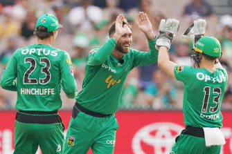 Glenn Maxwell celebrates a wicket for the Stars during their win over the  Perth Scorchers on Saturday night.