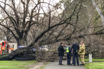 Emergency rescue workers on the scene atPrinces Parkin Parkville