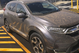 """""""My poor car,"""" says an anonymous reader."""