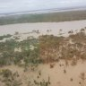 More than 1000 cattle to die in record Queensland floods