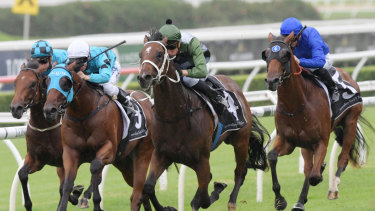 Yes Yes Yes has Glen Boss eying success in The Everest.