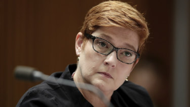 Foreign Affairs Minister Marise Payne said public service departments need to act on domestic violence.