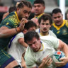 Home truth: Wallabies need to sharpen up or they will be sent packing