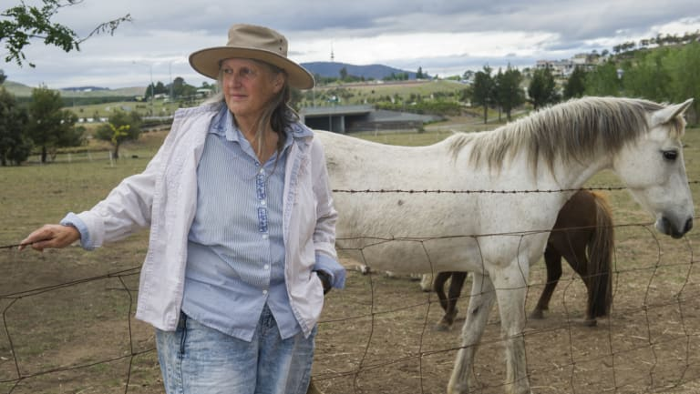 Celia Kneen has grazed horses or ponies on the block for 23 years.