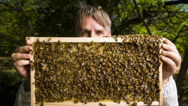 Eric Davies is a Canberra apiarist who collects swarms of bees from homes around Canberra.