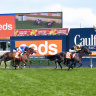Battle lost, but war not over for Cox Plate favourite Zaaki