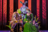 Shrek the Musical will come to Brisbane in January.