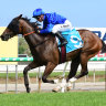 Four paths trekked on route to Stradbroke by Godolphin