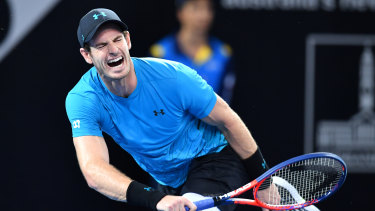 End may be nigh: Andy Murray has intimated that next week's Australian Open may be his swansong.