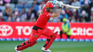 Aaron Finch bats for the Melbourne Renegades.