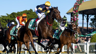 Tofane is one of the fancies, especially with Craig Williams in the saddle.
