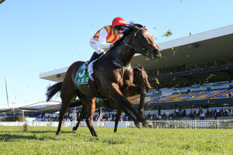 Peltzer is ready to fire in the Golden Rose at Rosehill on Saturday.