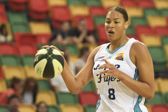 Liz Cambage's Southside Flyers couldn't match the Melbourne Boomers.