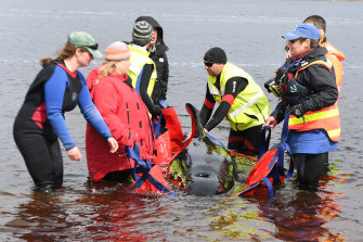 A rescue team at Macquarie Harbour in Tasmania on September 24.