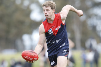 Casey Demons have withdrawn from this year's VFL competition.