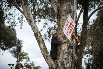 Dan Wollmering, a local resident, protests the proposed removal of the trees and razing of Gandolfo Park for the level crossing works on the Upfield line, Coburg.