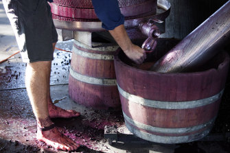 Shiraz and shiraz blends are a specialty of Gibson, in South Australia's Barossa Valley.