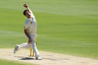 Mitchell Starc's thunderbolts have hustled out many a batsman.