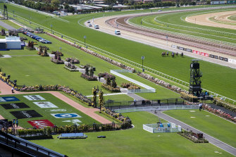 The empty lawn at Flemington on Melbourne Cup day 2020.