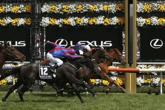 Vow And Declare puts his head out to win the Melbourne Cup last year.