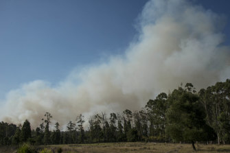 The planned burn at Tostaree