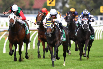 Quick Thinker races clear in the Tulloch Stakes at Rosehill last week.